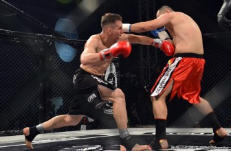UFT 2015 – Ultimate Fighting Tournament